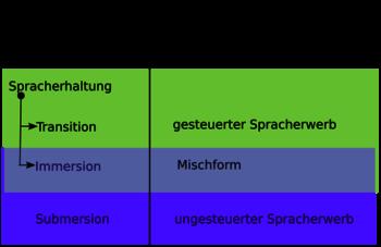 Arten des Zweitsprachenerwerbs