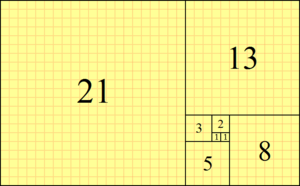 Fibonacci forgot the number squares behind the series
