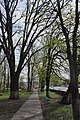 68-230-5017 Летичів парк (2).jpg