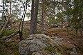 75366 Grinitjønn bygdeborg.jpg