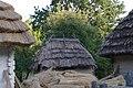 80-361-0867 Kyiv Pyrohiv SAM 0705.jpg