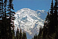 A061, Mount Rainier National Park, Washington, USA, 2002.jpg