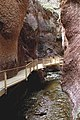 A086, Catwalk National Recreation Trail, Gila National Forest, Glenwood, New Mexico, USA, 2004.jpg