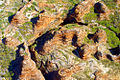 A201, Purnululu National Park, Western Australia, Bungle Bungles, from plane, 2007.JPG