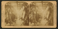 A half-mile of pork, Armour's great packing house, Chicago, Ill, from Robert N. Dennis collection of stereoscopic views 3.png