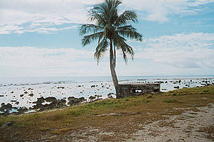 Abandoned Japanese Pillbox, Nauru (1998).jpg