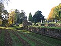 Abbey remains and churchyard - geograph.org.uk - 603925.jpg