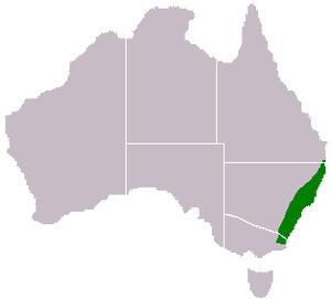 Acacia obtusifolia - Image: Acacia obtusifolia range map