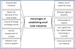 Cottage and small scale industries in Pakistan - advantages of establishing small-scale cottage industries in Pakistan