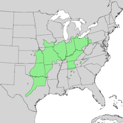 Aesculus glabra range map 1.png