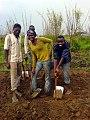 Agriculteurs en plein labour au Cameroun.jpg