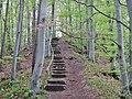 Albtraufgänger bei der Hossinger Leiter 945 m ü. NN - panoramio.jpg