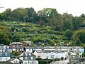 Allotments above Houses in Dartmouth - geograph.org.uk - 2656730.jpg