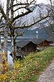 Altausseer See ost 79033 2014-11-15.JPG