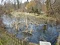 Alte Fischi in Bätterkinden - panoramio.jpg