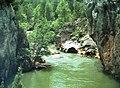 Alto Tajo - Cañón del río Tajo.jpg