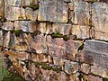 Amazing Rock Colours, Mount William Walk.JPG