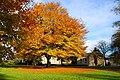 Amazing autumn trees in the Hexham Abbey Garden - panoramio.jpg