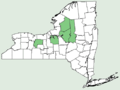 Amerorchis rotundifolia NY-dist-map.png
