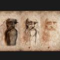 Anamorfosi di un Lupo Mannaro dall'Autoritratto Leonardo da Vinci – Rinascimento io.png