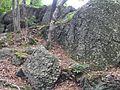 Anawan Rock, Rehoboth, Massachusetts-view.jpg
