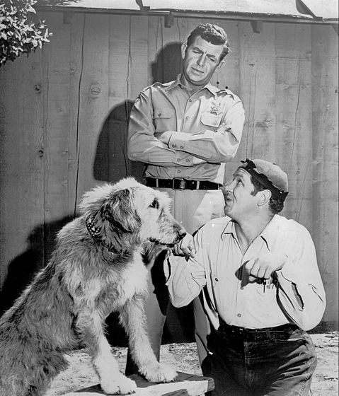 andy griffith dating history Who was married in mayberry of the andy griffith  central  who was married in mayberry of the andy  relationshits dating & online dating blue.