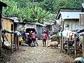 Angolares Market (20848916608).jpg
