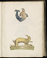 Animal drawings collected by Felix Platter, p1 - (29).jpg