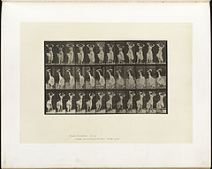 Animal locomotion. Plate 190 (Boston Public Library).jpg