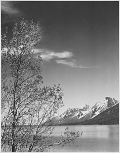 Ansel Adams - National Archives 79-AA-G03.jpg