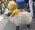 Antwerpen - Tour de France, étape 3, 6 juillet 2015, départ (157).JPG
