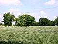 Arable field near Ryton Heath Farm - geograph.org.uk - 1901705.jpg