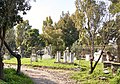 Archaeological site of the Ancient Agora of Athens. Ancient gravestones on the back side of the Temple of Hephaestus.jpg