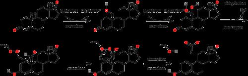 oestrogenic steroids