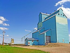 Arrowwood, Alberta - Last of four elevators along the former CPR track bed on the west side of town.