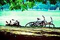 As bikes também amam.jpg