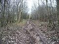 Ascending towards Tinker's Barn - geograph.org.uk - 1596170.jpg