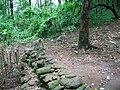 Athirapally Forest - panoramio.jpg