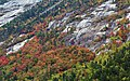 Autumn Hillside (6235211441).jpg
