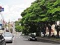 Avenida Major Nicácio, Franca (SP), Brasil 13012019.jpg