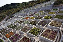 Japanse tuin wikipedia for Kleine tuinvijver