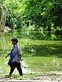Ayutthaya Historical Park - Ayutthaya - Thailand - 03 (34942353635).jpg