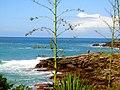 Búzios RJ Brasil - Praia da Foca - panoramio.jpg