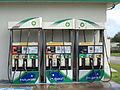 BP Pumps, US 19, Jefferson County.JPG