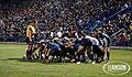 BYU Rugby.jpg