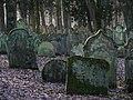 Bad Rappenau - Heinsheim - Jüdischer Friedhof - Grabsteine im Gegenlicht 3.jpg
