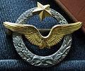 Badge pilote 12279.JPG