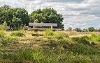 Balloërveld, natuurgebied in Drenthe 38.jpg
