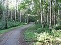 Baltupiai, Vilnius, Lithuania - panoramio (97).jpg