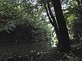 Banat,Nera Canyon - panoramio (23).jpg